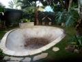 avacado-bowl